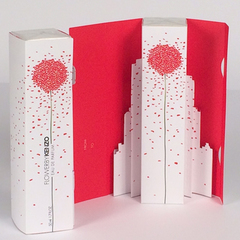 Fabrication packaging de luxe - Coffret pop